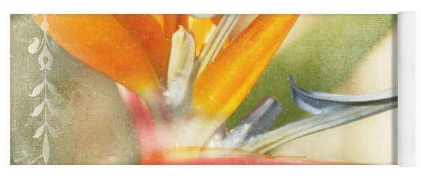 Bird Of Paradise - Strelitzea Reginae - Tropical Flowers Of Hawaii Yoga Mat