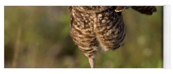Burrowing Owl Photograph Yoga Mat