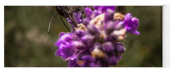 Carpenter Bee On A Lavender Spike Yoga Mat