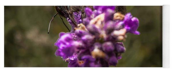 Carpenter Bee On A Lavender Spike Yoga Mat