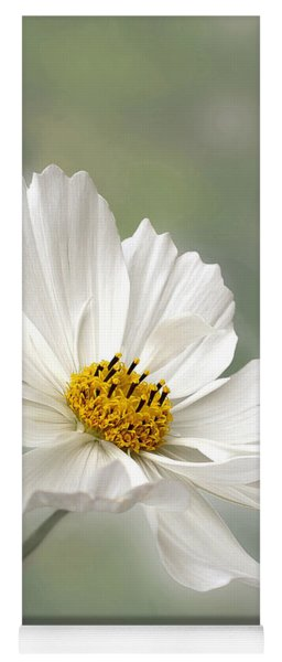 Cosmos Flower In White Yoga Mat