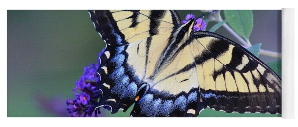 Eastern Tiger Swallowtail Butterfly On Butterfly Bush Yoga Mat