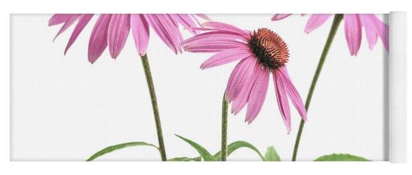 Echinacea Purpurea Flowers Yoga Mat