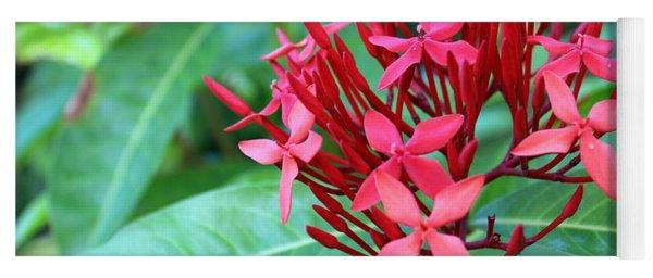 Jamaican Red Yoga Mat