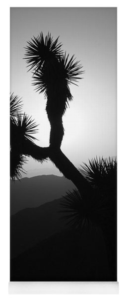 New Photographic Art Print For Sale Joshua Tree At Sunset Black And White Yoga Mat