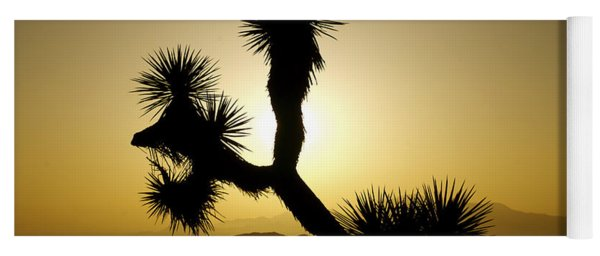 New Photographic Art Print For Sale Joshua Tree At Sunset Yoga Mat