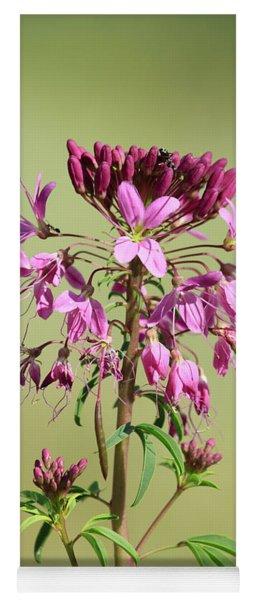 Rocky Mountain Bee Plant Yoga Mat