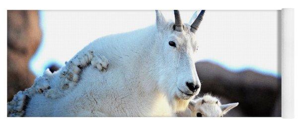 Rocky Mountain Goats - Nanny And Kid Yoga Mat