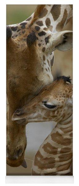 Rothschild Giraffe And Calf Yoga Mat