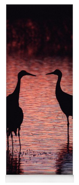 Sandhill Cranes Yoga Mat