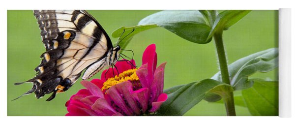 Tiger Swallowtail Butterfly On Zinnia Yoga Mat