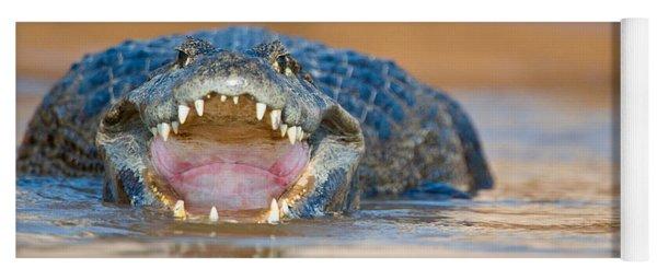 Yacare Caiman Caiman Crocodilus Yacare Yoga Mat