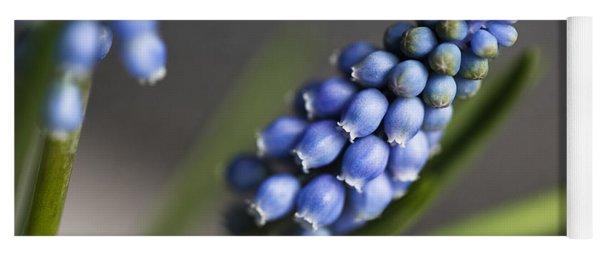 Grape Hyacinth Yoga Mat