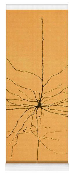 Pyramidal Cell In Cerebral Cortex, Cajal Yoga Mat