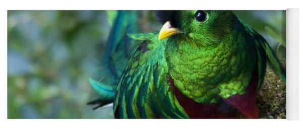 Quetzal Yoga Mat