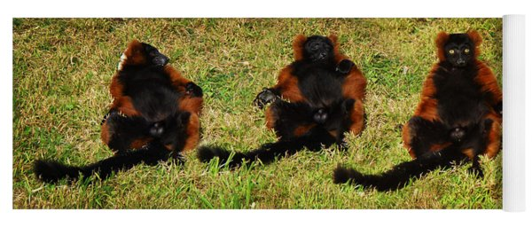 3 Red Ruffed Lemur Boys Yoga Mat