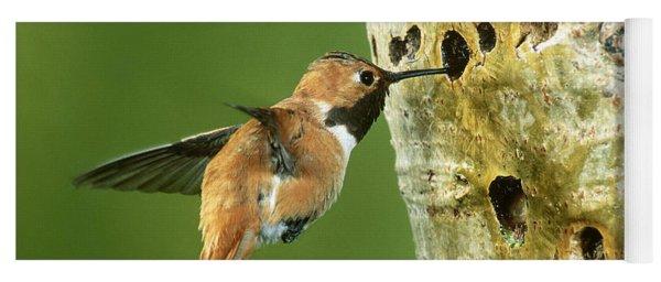 Rufous Hummingbird Yoga Mat