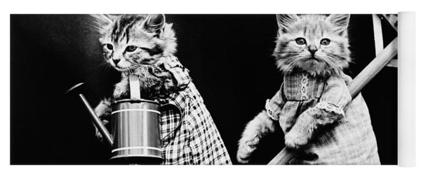 Frees Kittens, C1914 Yoga Mat