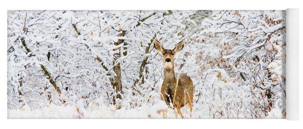 Doe Mule Deer In Snow Yoga Mat