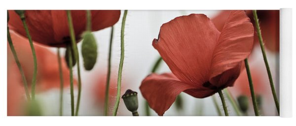 Red Poppy Flowers Yoga Mat