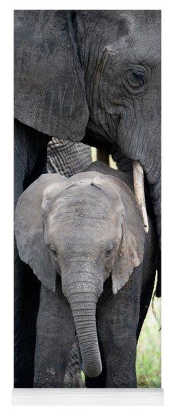African Elephant Loxodonta Africana Yoga Mat