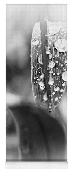 Raindrops On Grass  Yoga Mat