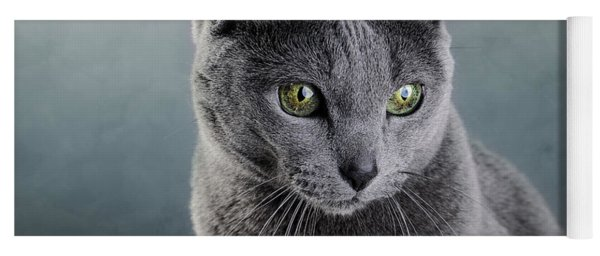Russian Blue Cat Yoga Mat