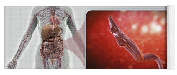 Schistosoma Parasite Worm Yoga Mat
