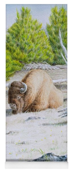 A Buffalo Sits In Yellowstone Yoga Mat