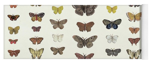 A Collage Of Butterflies And Moths Yoga Mat