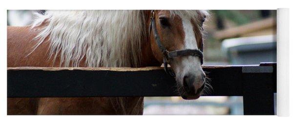 A Hilton Head Island Horse Yoga Mat