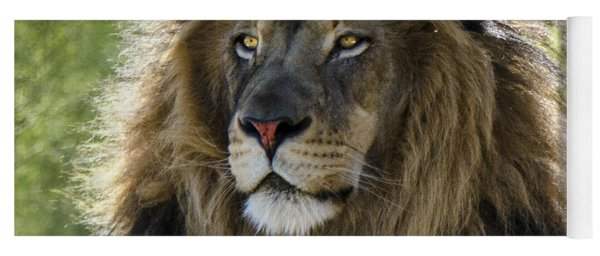 A Lion's Thoughts Yoga Mat