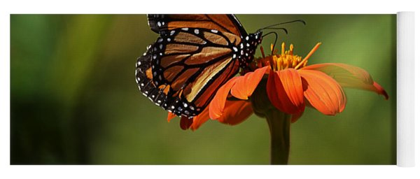 A Monarch Butterfly 2 Yoga Mat