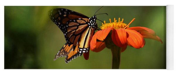 A Monarch Butterfly 3 Yoga Mat