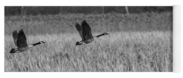 A Pair Of Geese Leaving The Marsh In Black And White Yoga Mat