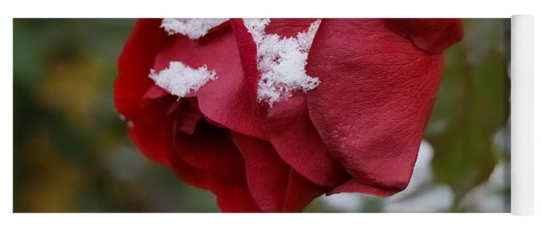 A Passing Unrequited - Rose In Winter Yoga Mat