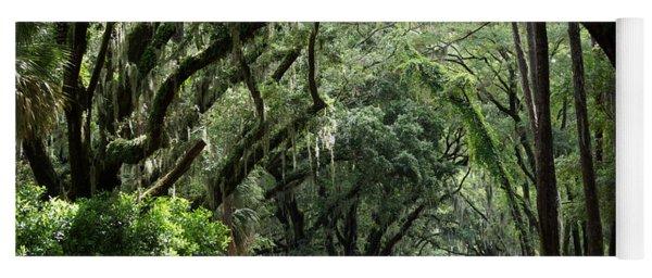 A Pretty Tree Covered Road Somewhere On Hilton Head Island Yoga Mat