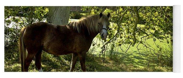 Horse Heaven A Shady Spot Yoga Mat