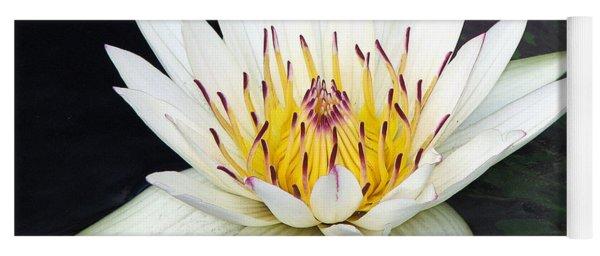 Botanical Beauty Yoga Mat