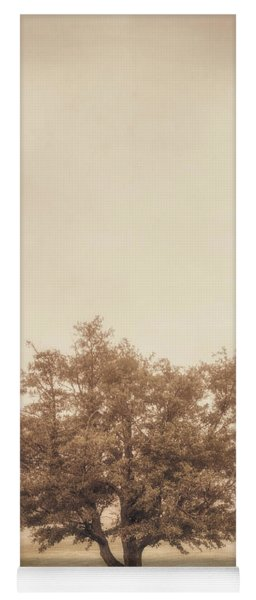 A Tree In The Fog Yoga Mat
