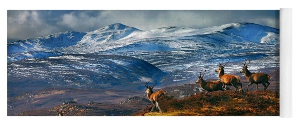 Above Strathglass Yoga Mat