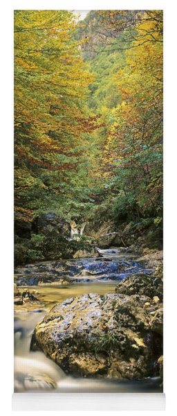 Abruzzo National Park In Italy Yoga Mat