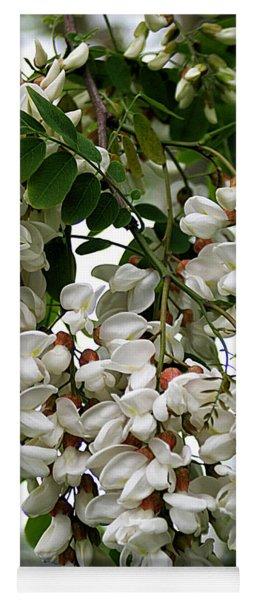Acacia Tree Flowers Yoga Mat
