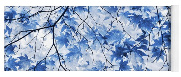 Acer Blue Yoga Mat