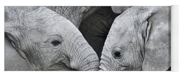 African Elephant Calves Loxodonta Yoga Mat