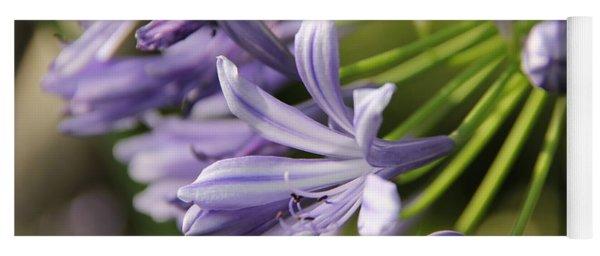 Agapanthus Flower Close-up Yoga Mat