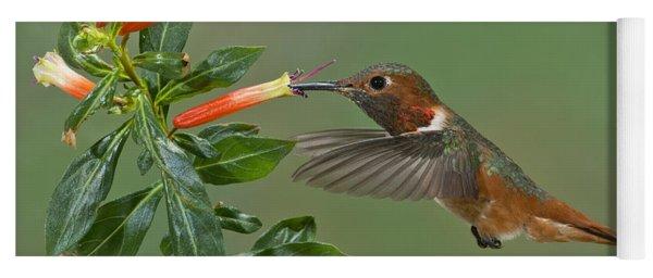 Allens Hummingbird Feeding Yoga Mat