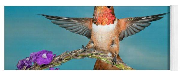Allens Hummingbird Male Yoga Mat