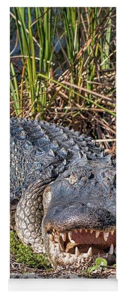 Alligator -34 Yoga Mat