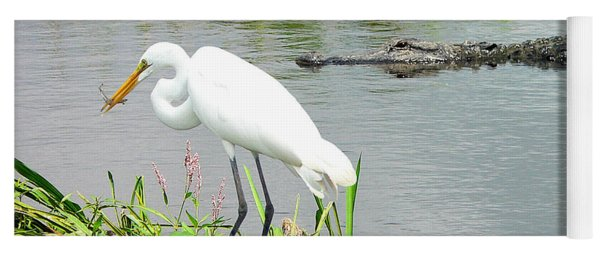 Alligator Egret And Shrimp Yoga Mat